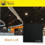 Placă tavan casetat BLACK LOFT 80 lei